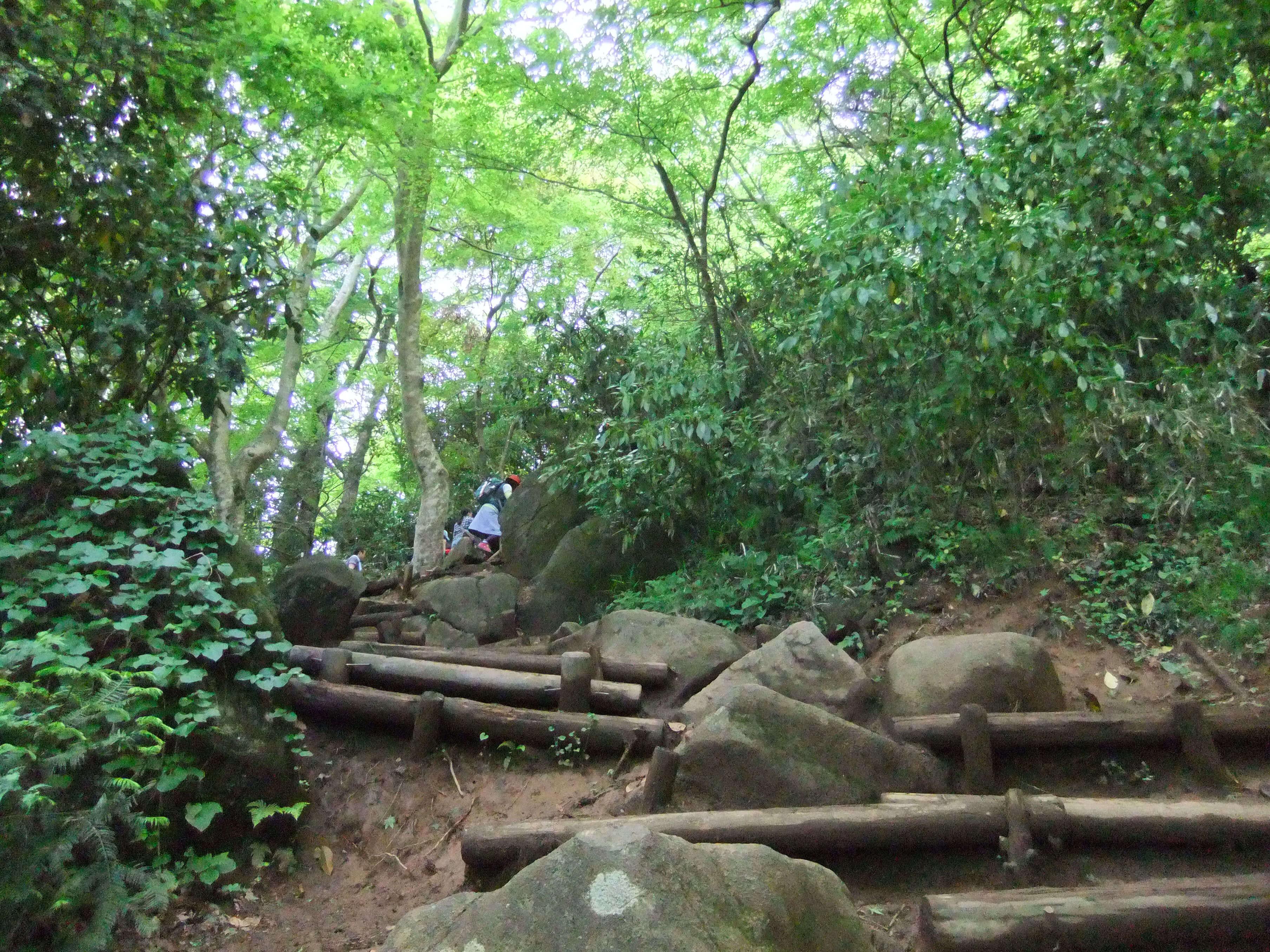 筑波山の山道