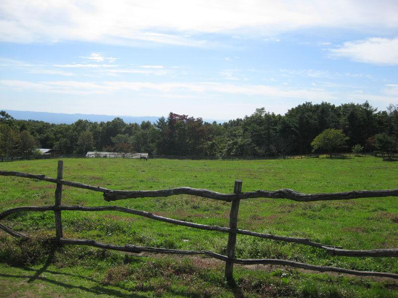 山の衣替え - 那須高原と秋の空