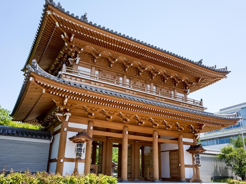 文京区散歩 〜 夏めく小石川植物園
