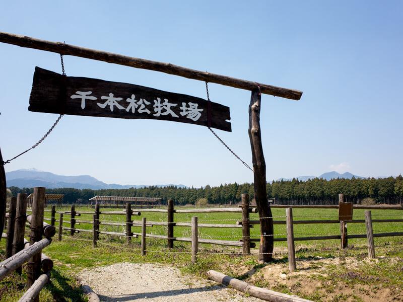 那須塩原の千本松牧場と那須ガーデンアウトレットに行ってきた